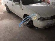Bán xe Daewoo Cielo đời 1997, màu trắng, nhập khẩu, giá chỉ 38 triệu giá 38 triệu tại Cần Thơ