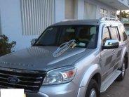 Cần bán xe Ford Everest 2.5L 4x2 MT sản xuất 2009, màu bạc chính chủ giá 500 triệu tại Lâm Đồng