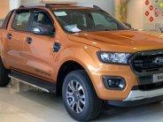 Ford Ranger sự lựa chọn hoan hảo cho mọi địa hinh giá 630 triệu tại Tp.HCM