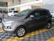 Bán Ford EcoSport Titanium 1.5AT đời 2015, màu nâu, 486 triệu. giá 486 triệu tại Tp.HCM