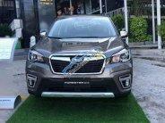 Cần bán xe Subaru Forester sản xuất năm 2019, thương hiệu Nhật Bản nỗi tiếng trong giới xe đua giá 990 triệu tại Cần Thơ