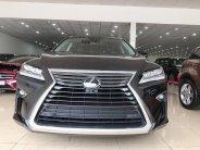 Bán ô tô Lexus RX350 đời 2019, màu đen, nhập khẩu chính hãng giá 4 tỷ 500 tr tại Hà Nội