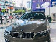 Bán xe BMW 5 Series 530i  Luxury sản xuất năm 2019, xe nhập giá 3 tỷ 69 tr tại Tp.HCM