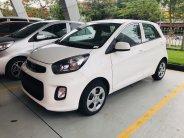 Cần bán Kia Morning stardard đời 2019, màu trắng, giá tốt đủ mầu sẵn xe giao ngay giá 339 triệu tại Bắc Ninh