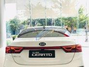Bán Kia Cerato Standard MT đời 2019, mới hoàn toàn giá 559 triệu tại TT - Huế