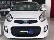 Cần bán stardard MT đời 2019, giá chỉ 299 triệu đủ màu sẵn xe giao ngay giá 299 triệu tại Bắc Ninh