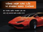 /kinh-nghiem/tong-hop-cac-loi-vi-pham-bi-tuoc-quyen-su-dung-gplx-o-to-533