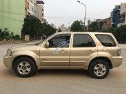 Nhà đổi xe cần bán Ford Escape 2005, 178tr giá 178 triệu tại Tp.HCM
