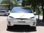 Bán xe Mỹ Tesla X P100D SX 2018 giá 8 tỷ 800 tr tại Hà Nội