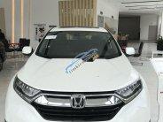 Bán Honda CR V L đời 2019, màu trắng, nhập khẩu   giá 1 tỷ 93 tr tại Tp.HCM