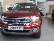 Bán Ford Everest sản xuất năm 2019, màu đỏ, nhập khẩu   giá 1 tỷ 59 tr tại Bình Định