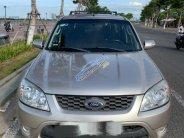 Bán Ford Escape sản xuất năm 2013, nhập khẩu  giá 450 triệu tại Đà Nẵng