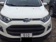 Bán Ford EcoSport Titanium sản xuất năm 2017, màu trắng giá 550 triệu tại Hà Nội