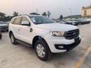 Bán Ford Everest năm sản xuất 2019, màu trắng, nhập khẩu   giá 999 triệu tại Tp.HCM