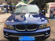 Cần bán BMW X5 năm sản xuất 2006, nhập khẩu, chính chủ giá 545 triệu tại Tp.HCM