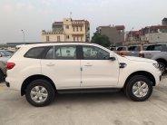 Mua xe Ford Everest 2020 giảm tiền mặt 100tr  giá 999 triệu tại Tp.HCM
