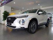 Cần bán Hyundai Santa Fe đời 2019, nhập khẩu giá 1 tỷ 120 tr tại Tp.HCM