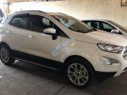 Bán xe Ford EcoSport 2018, xe chính chủ, còn nguyên bản giá 650 triệu tại Tp.HCM