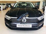 Cần bán xe Volkswagen Passat đời 2019, nhập khẩu nguyên chiếc giá 1 tỷ 480 tr tại Đà Nẵng