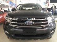 Bán xe Ford Everest Ambient 2.0 AT đời 2019, xe nhập giá 990 triệu tại Hải Dương