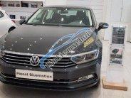 Cần bán lại xe Volkswagen Passat 2018 xe còn mới giá 1 tỷ 480 tr tại Tây Ninh