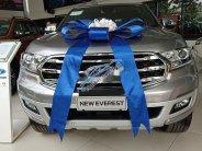 Bán xe Ford Everest năm sản xuất 2019, màu bạc giá 1 tỷ 295 tr tại Đắk Lắk