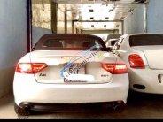 Bán xe Audi A5 sản xuất 2008, màu trắng, nhập khẩu   giá 880 triệu tại Tp.HCM