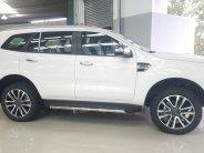 Cần bán Ford Everest titanium đời 2020, màu trắng, nhập khẩu giá 999 triệu tại Lâm Đồng