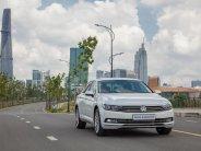 Volkswagen Passat Bluemotion trái tim màu xanh của ngành ô tô giá 1 tỷ 480 tr tại Quảng Ninh