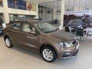 Cần bán Volkswagen Polo năm 2020, màu nâu, xe nhập, giá tốt giá 695 triệu tại Quảng Ninh