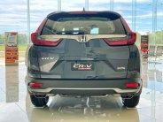 Bán Honda CRV 1.5 L, 7 chỗ, nhập khẩu, có trả góp, nhận xe ngay giá 1 tỷ 118 tr tại Tp.HCM