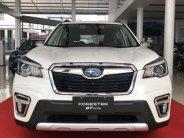 Subaru Forester iL 2021, nhập khẩu chính hãng giá 969 triệu tại Tp.HCM