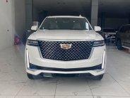 Cần bán Cadillac Escalade đời 2020, màu trắng, nhập khẩu giá 8 tỷ 180 tr tại Hà Nội